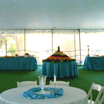 Carpet Floor Tent for parties
