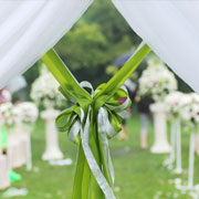 white tent rental with green bow